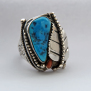 Cycle Of Life Navajo-style men's ring